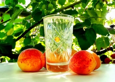 абрикосовый самогон