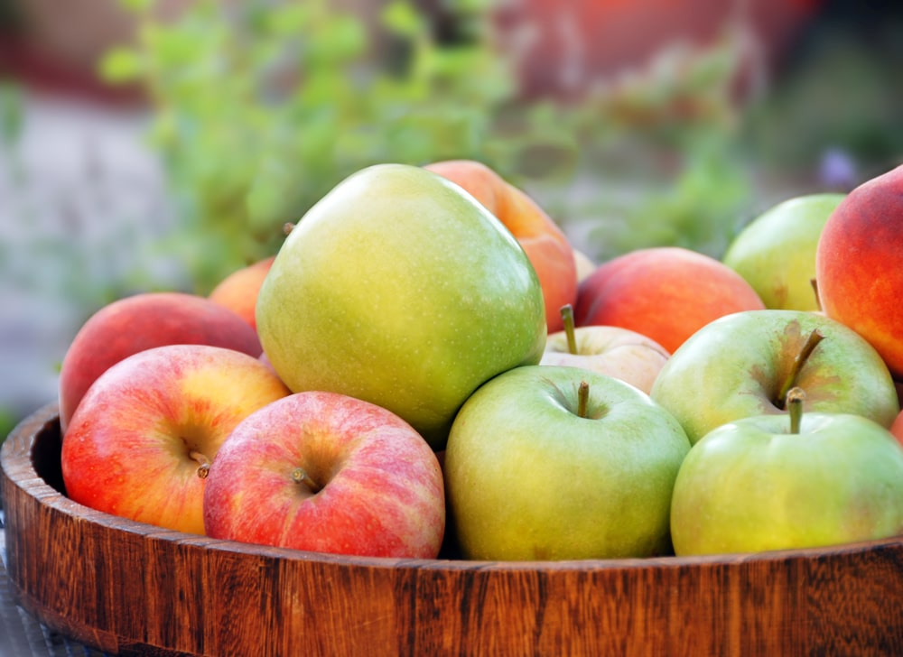 Рецепты приготовления бражки из яблок