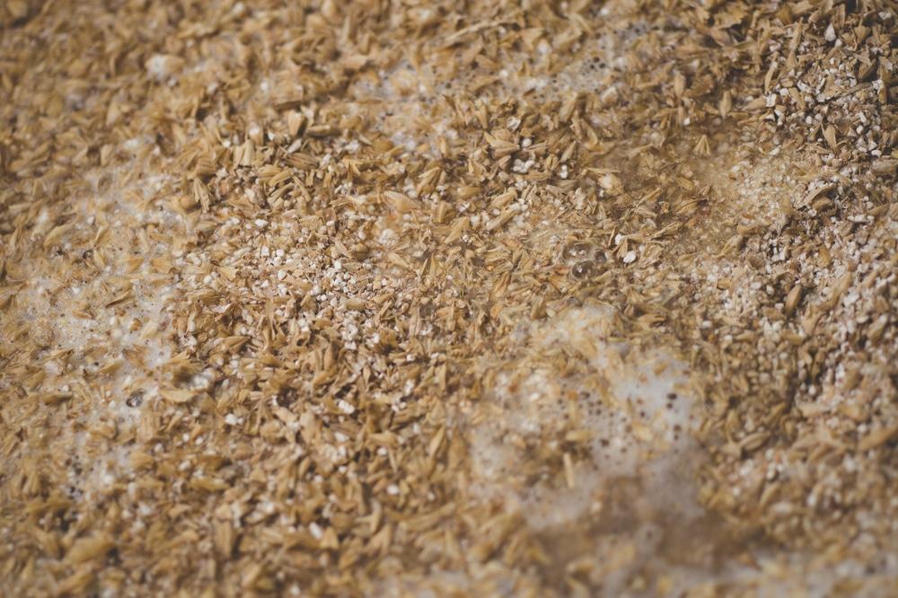Рецепт пшеничной браги