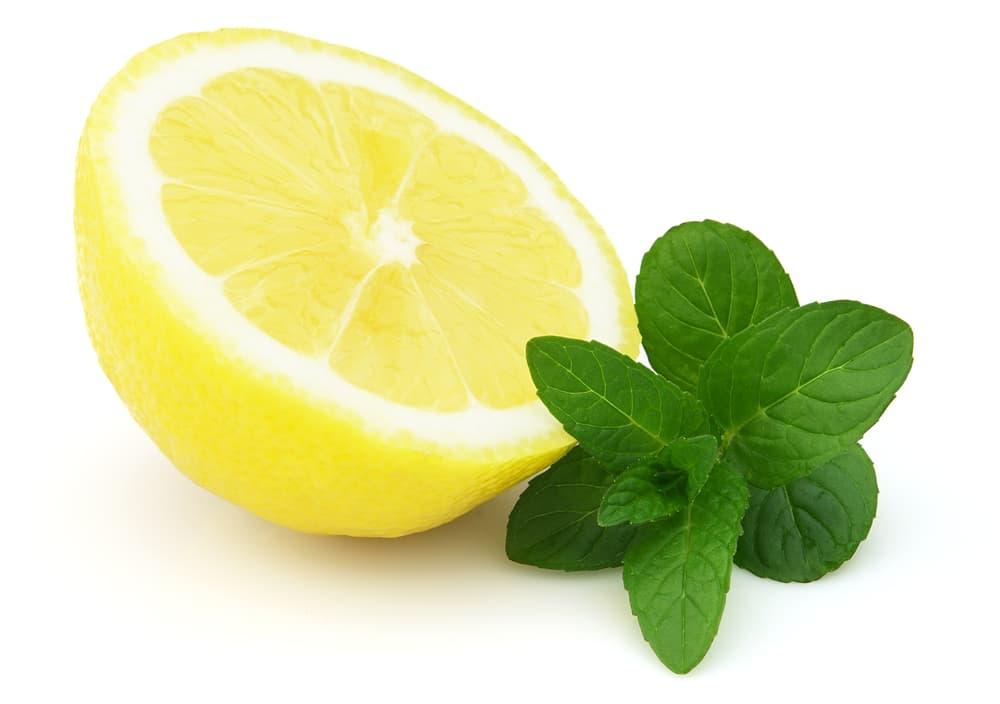 Лимонная настойка на водке с добавлением мяты